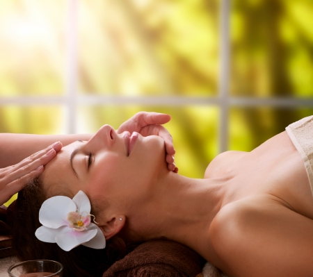 spa therapy: Spa Facial Massage