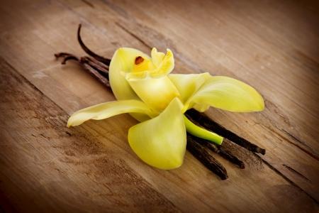 vanilla flower: Vanilla Pods And Flower on a Wooden Background