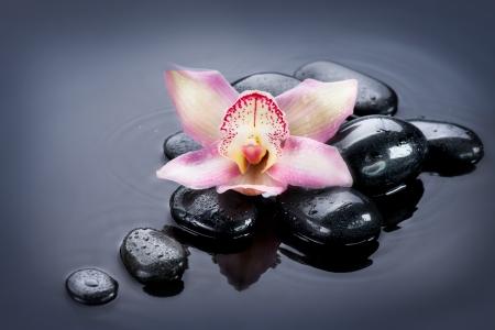 obrero: Zen Spa Stones Foto de archivo