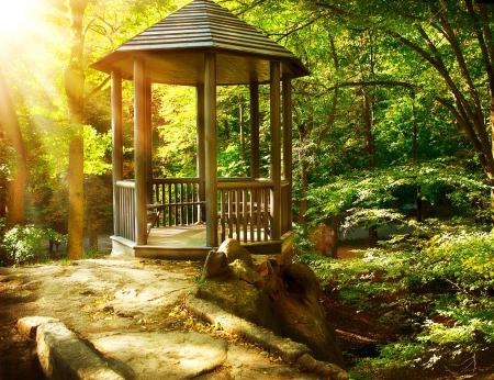 paisajismo: Arbor en Paisajismo Parque oto�al