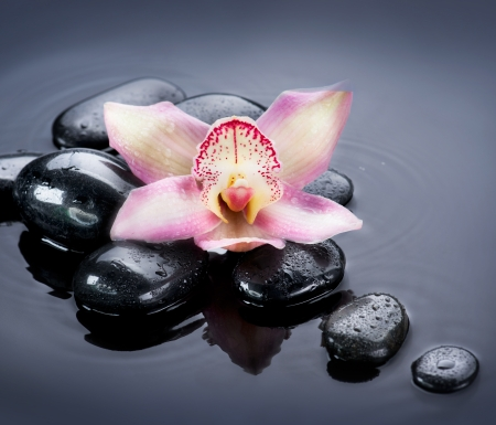 traditional wellness: Spa Zen Stones Stock Photo