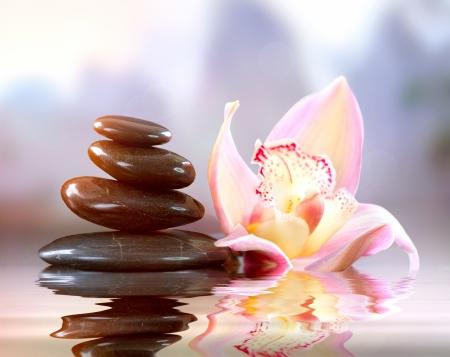 steine im wasser: Spa Zen Stones Harmony Konzept