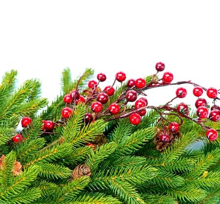 evergreen branch: �rbol de Navidad Decoraciones Dise�o Frontera Foto de archivo