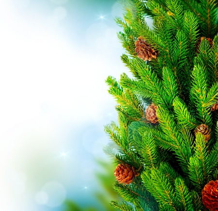 Christmas Tree Border Design over Green Blurred background  photo