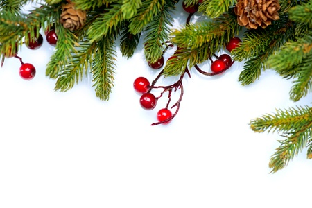 snow cone: Christmas Tree Border Design Isolated on white