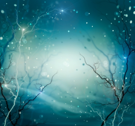 winter tree silhouette: Winter Nature Abstract Background  Fantasy Backdrop  Stock Photo