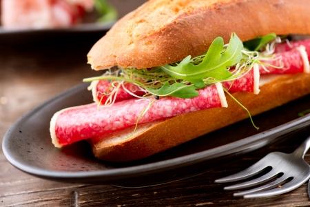 Sandwich with Salami  Stock Photo - 17603180