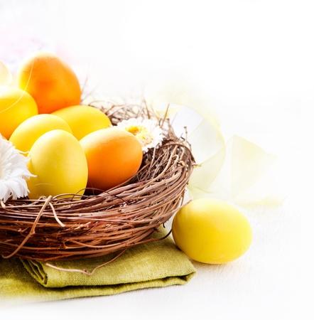 Pascua pintó los huevos de Pascua y flores de la primavera en el Nido