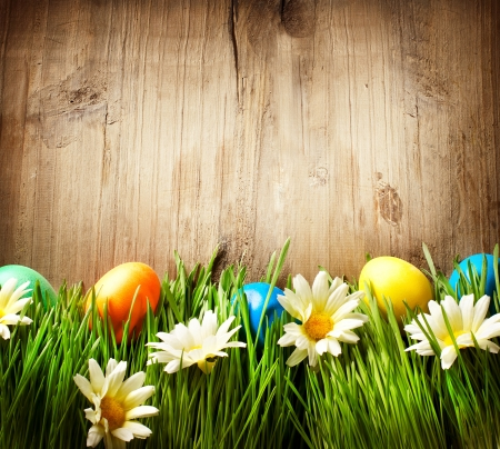 easter decorations: Colorful Easter Eggs in Spring Grass and Flowers over Wood