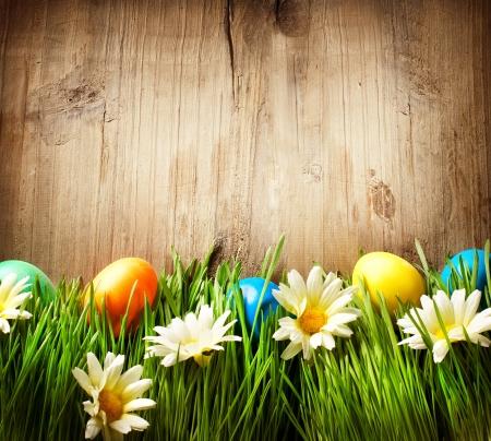 pascuas navide�as: Coloridos huevos de Pascua en hierba de la primavera y de las flores sobre la madera