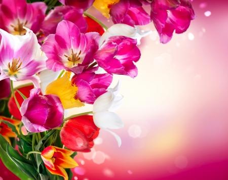 flower border pink: Spring Flowers  Tulips Border Art Design