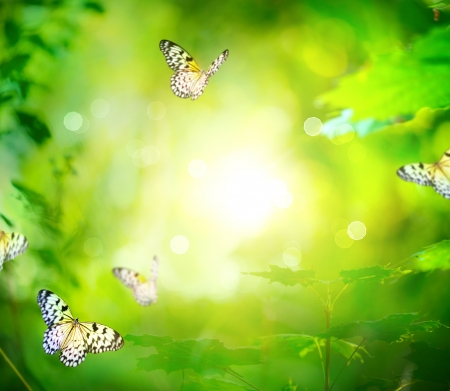 good feeling: Beautiful Nature Spring Green Background With Butterfly