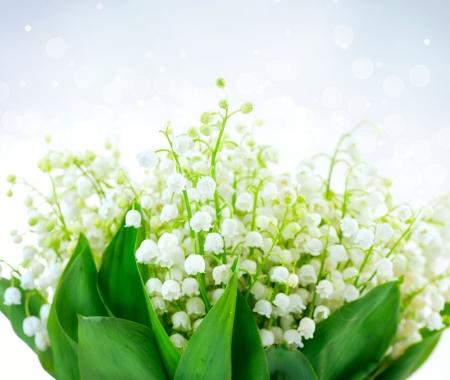 lirio blanco: Lirio de los valles del dise�o floral Ramo de blancas flores de la primavera Foto de archivo