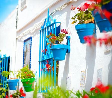 トレモリノス コスタ ・ デル ・ ソル、アンダルシアの典型的な白い村