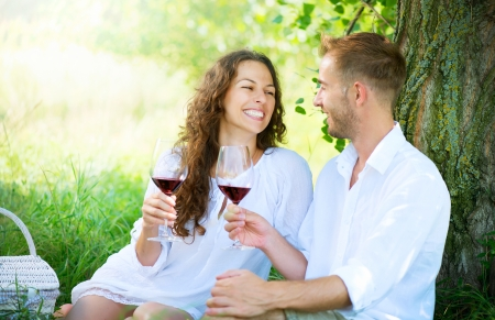Picnic  Young Couple relaxing and drinking Wine in a Park