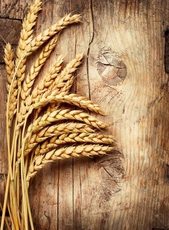 木の木製の背景に小麦の穂