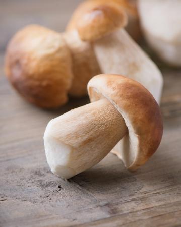 boletus mushroom: Mushroom Boletus over Wooden Background  Autumn Cep Mushrooms