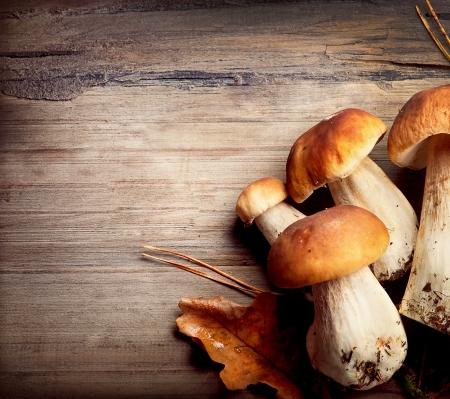 hongo: Hongos Boletus sobre fondo de madera del oto�o ceps