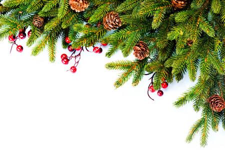 fir: Christmas  Evergreen Fir tree Border Design Stock Photo