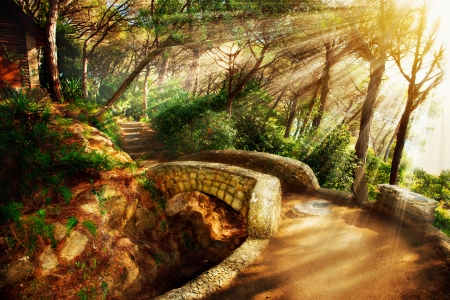 fantasy landscape: Mystical Park  Old Trees and Ancient Stone Bridge  Pathway  Stock Photo
