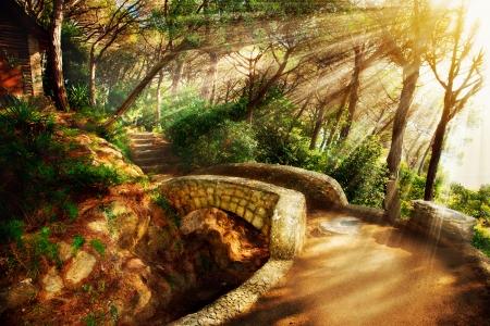 Mystieke Park Oude Bomen en Oude Stenen Brug Pathway Stockfoto