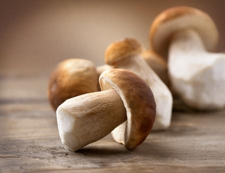 esporas: Mushroom Boletus sobre fondo de madera Setas del Cep del oto�o