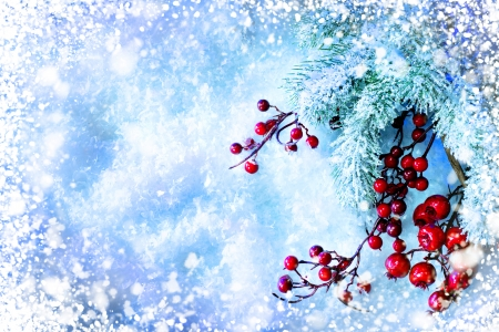 Christmas Tree and Decorations over Snow background photo