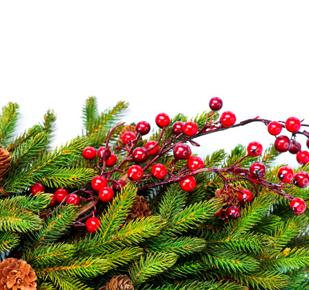Christmas  Evergreen Fir tree Border Design Stock Photo - 24516451