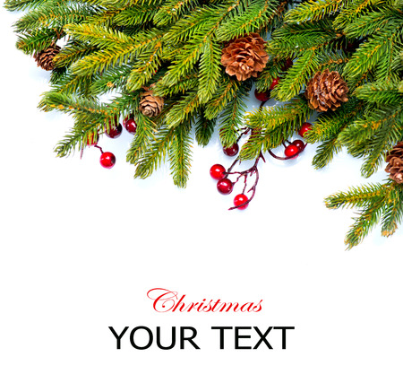 pine branches: Christmas  Evergreen Fir tree Border Design Stock Photo