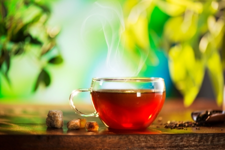 Cup of Tea over Blurred Nature Green background  Herbal Tea photo