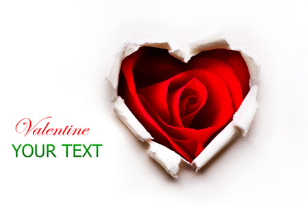 Paper Valentines Heart with Red Rose Flower inside Stock Photo - 25059939