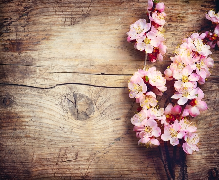 Spring Blossom over wooden background 版權商用圖片
