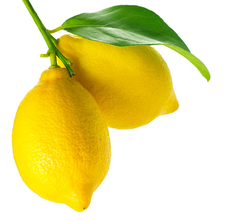 Lemon isolated on White  Fresh and Ripe Lemons Standard-Bild