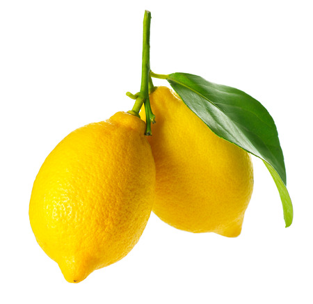 lemon tree: Lemon isolated on White  Fresh and Ripe Lemons Stock Photo
