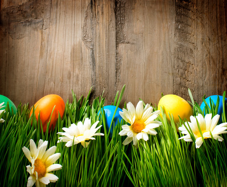 Easter  Colorful Easter Painted Eggs in Spring Grass photo