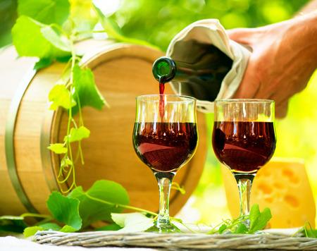 Red Wine and Cheese Romantische Mittagessen im Freien Standard-Bild