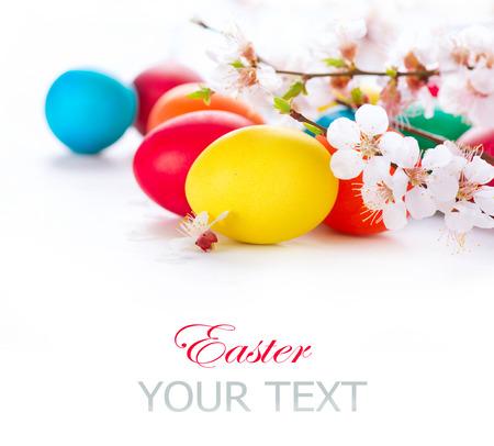 봄 꽃 꽃과 부활절 다채로운 부활절 달걀 스톡 콘텐츠