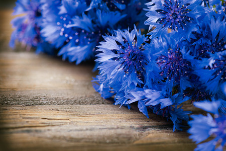 Cornflowers over wooden background  Wild blue flowers photo