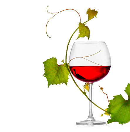 Glass of wine isolated on white background photo