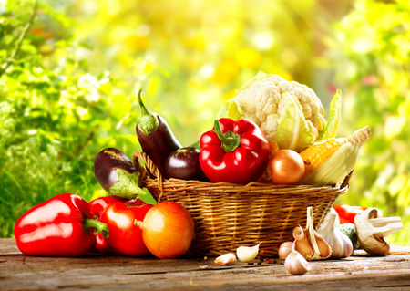Fresh Organic Bio Vegetable in a Basket over Nature Background