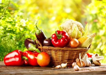 alimentacion sana: Fresh vegetal orgánico Bio en una cesta sobre la naturaleza de fondo Foto de archivo