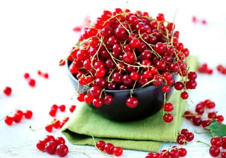 Redcurrant. Ripe organic redcurrant berries over white photo