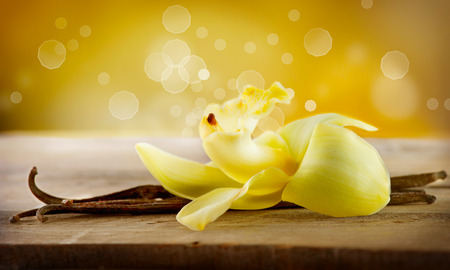 flores exoticas: Vanilla Pod palos y flor Foto de archivo