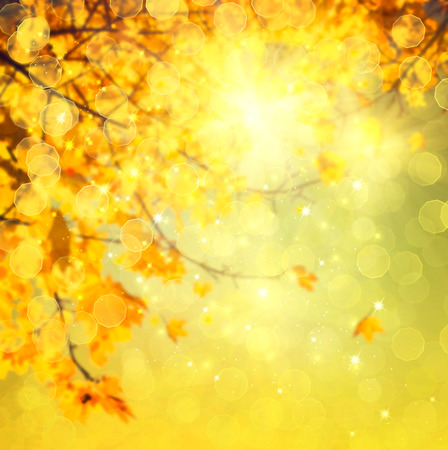 sunshine background: Autumn. Blurred abstract autumnal background