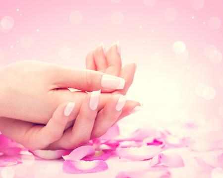 美容: 手中的水療中心。修剪整齊的女手,柔軟的皮膚,美麗的指甲
