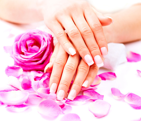 pink nail polish: Hands spa. Beautiful female hands with pink rose flowers petals