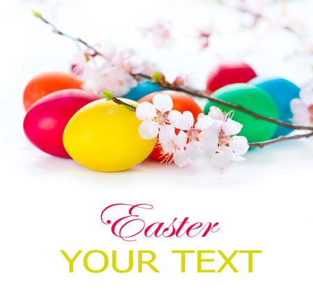 Colorful Easter eggs with spring blossom flowers over white