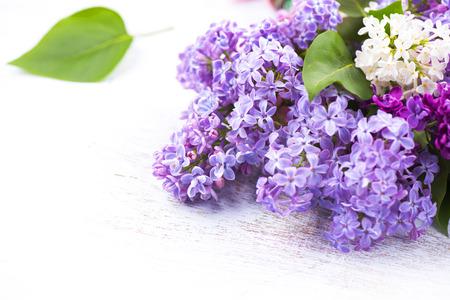 흰색 나무 배경 위에 라일락 꽃 무리