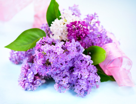 bunch up: Lilac flowers bunch over white wooden background