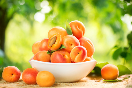 Apricot. Ripe organic apricots on a wooden table